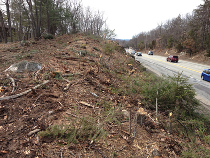 Trees were cut along the south side of Route 2 several weeks ago.