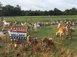 hillary-stampede